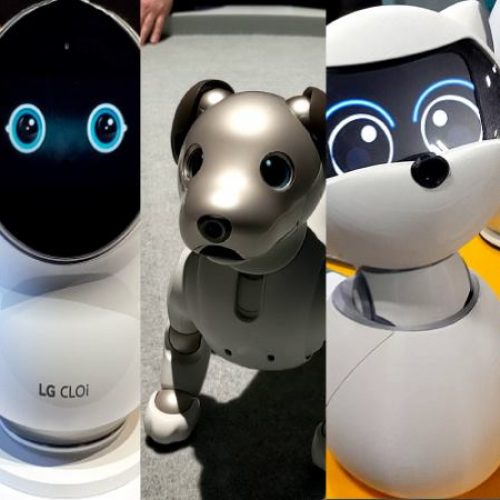 5 best companion robots of CES 2019