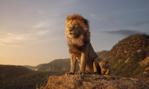 Timon and Pumbaa sing 'The Lion Sleeps Tonight' in new The Lion King trailer