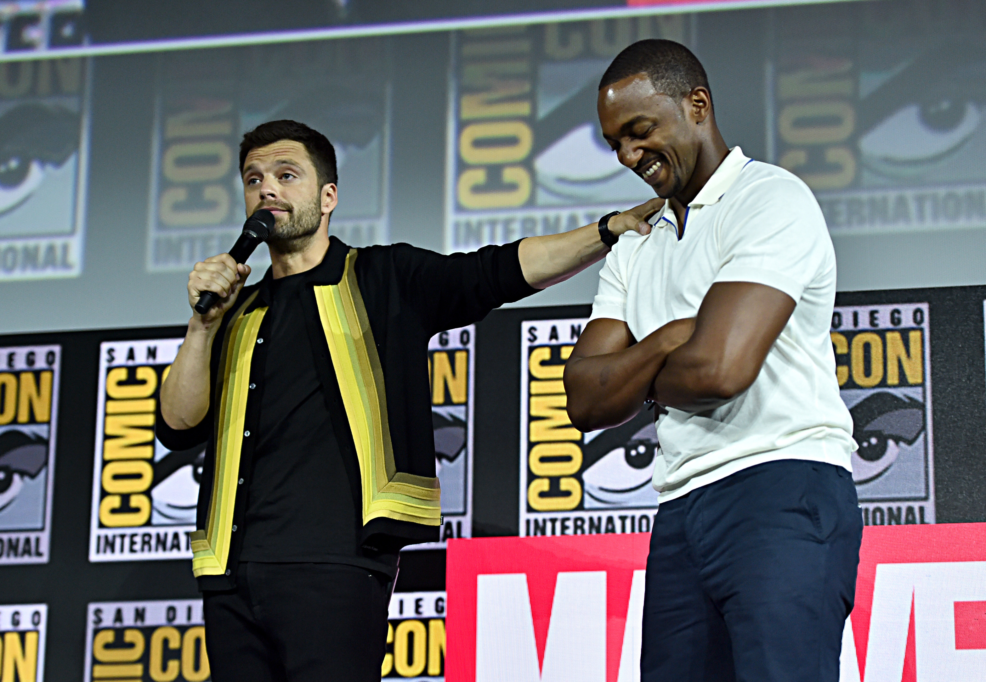 Falcon and the Winter Soldier - Sebastian Stan and Anthony Mackie