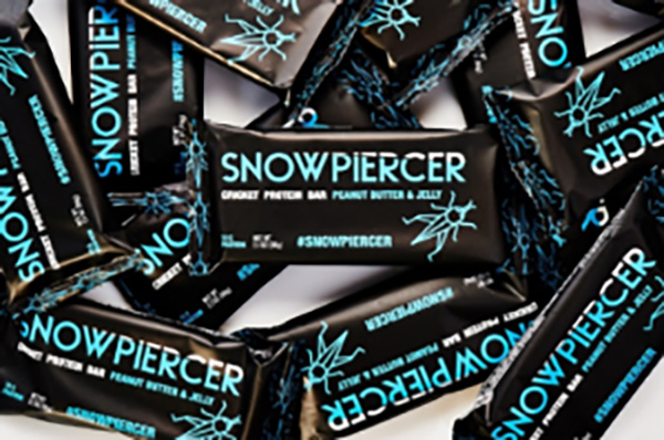 Snowpiercer bug bar