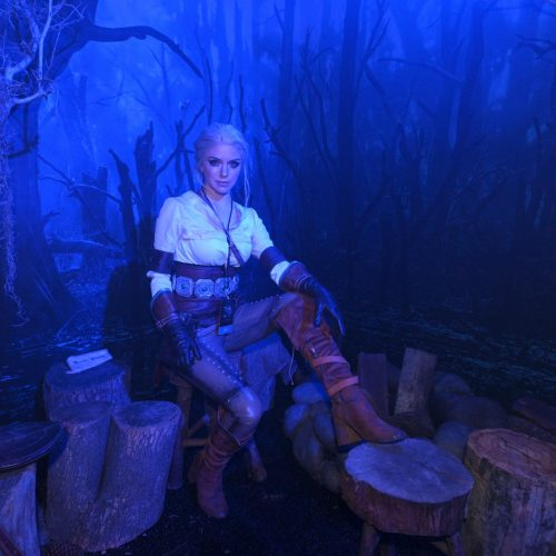 Fans practiced sorcery and met Roach at The Witcher Experience in Hollywood