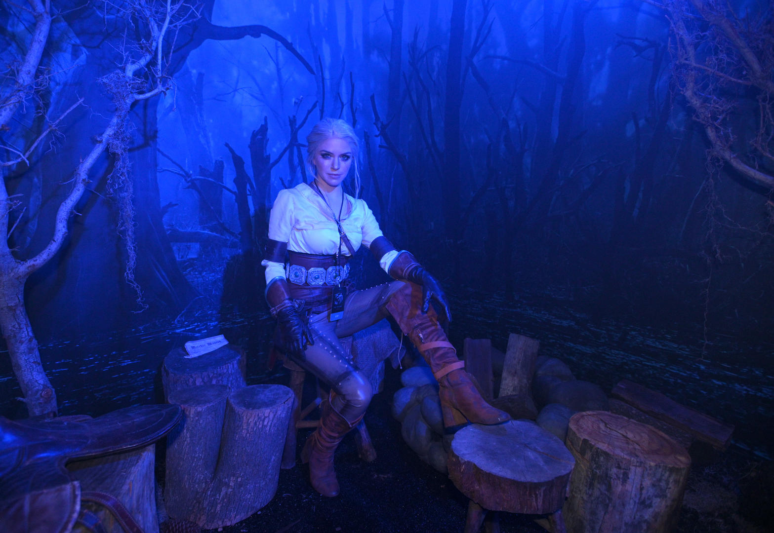 The Witcher Experience Ciri