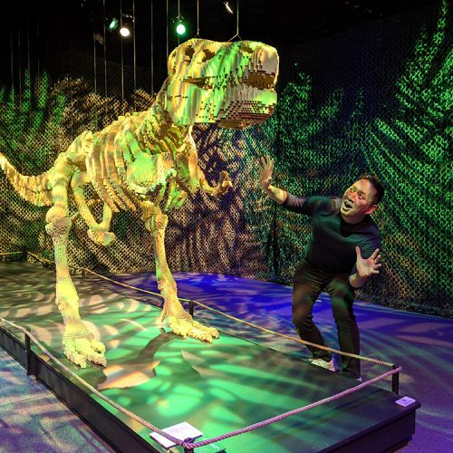 The Art of the Brick Exhibit features over 100 LEGO sculptures and 1 million LEGO bricks